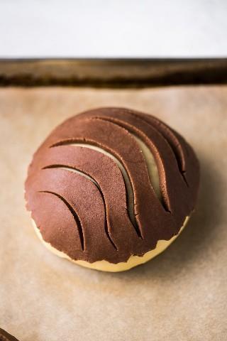 Conchas de chocolate (un popular pan dulce mexicano) en una bandeja para hornear listo para hornear en el horno.