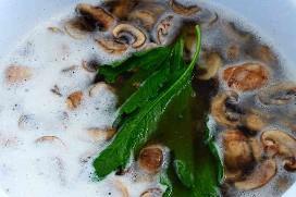 Sopa de cogumelos com Epazote