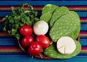 Ingredientes de ensalada de cactus