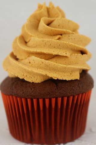 La crema batida Spice de Pumpkin Spice es cremosa, deliciosa y sabe igual que la crema batida con sabor a Pumpkin Spice. Perfecto para cualquier cupcake de otoño o tortas.