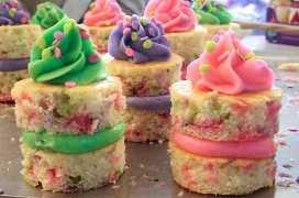 Asamblea de las mordeduras de pastel de confeti de primavera