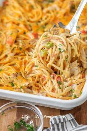 Sirviendo desde cero espaguetis caseros de pollo