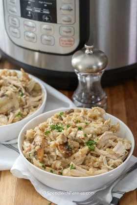Un tazón de pollo y arroz Instant Pot con una coctelera a su lado y un fondo Instant Pot.
