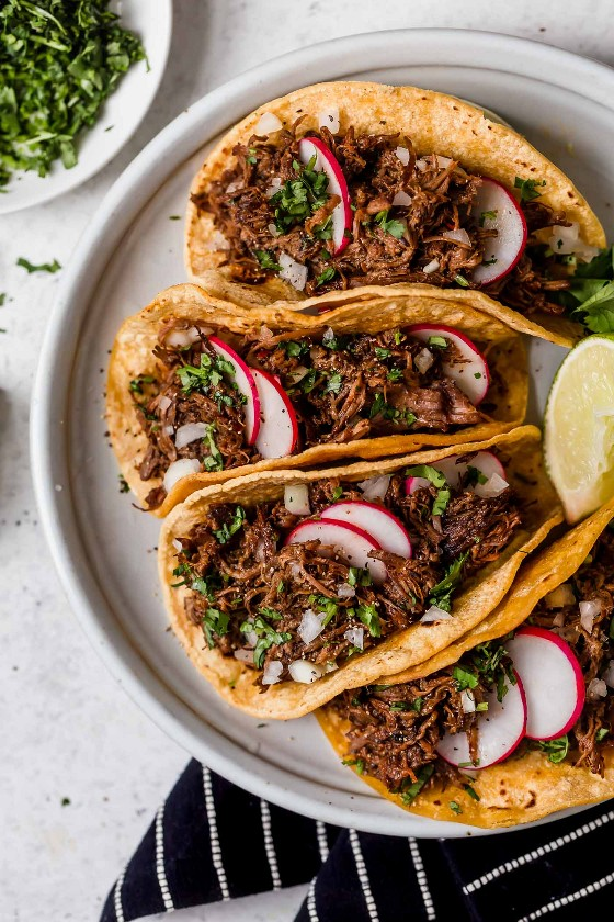 Barbacoa de res en capas en tortillas de maíz para hacer tacos. Se muestra sentado en una fuente de color gris claro, la carne de res se adorna con cilantro y rábanos.