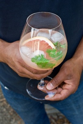 Pink Grapefruit & Cilantro Spanish Gin Tonic Cóctel