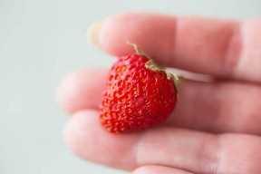 Una pequeña fresa sujeta por la punta de los dedos.