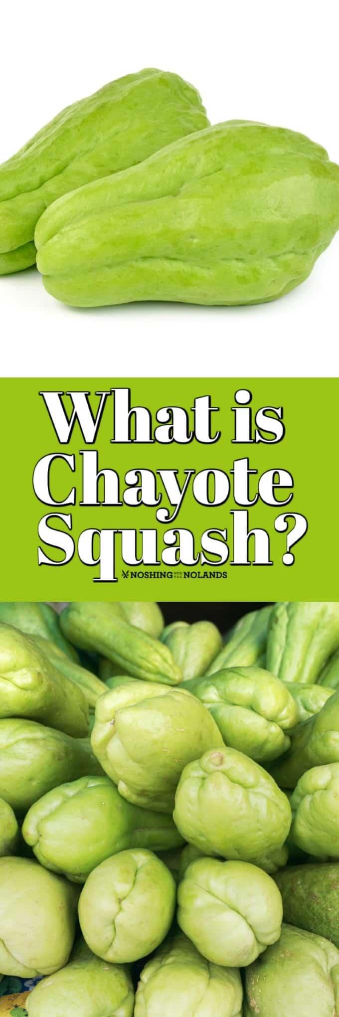 ¿Qué es Chayote Squash y qué hago con él? La calabaza chayote es tan jugosa y deliciosa que si no la has probado debes hacerlo. #chayote #squash #howto