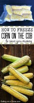 Como congelar a espiga de milho para economizar dinheiro