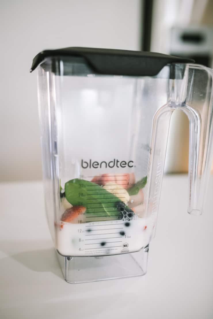 Blendec Blender para fazer Smoothie Freezer Pack Recipes