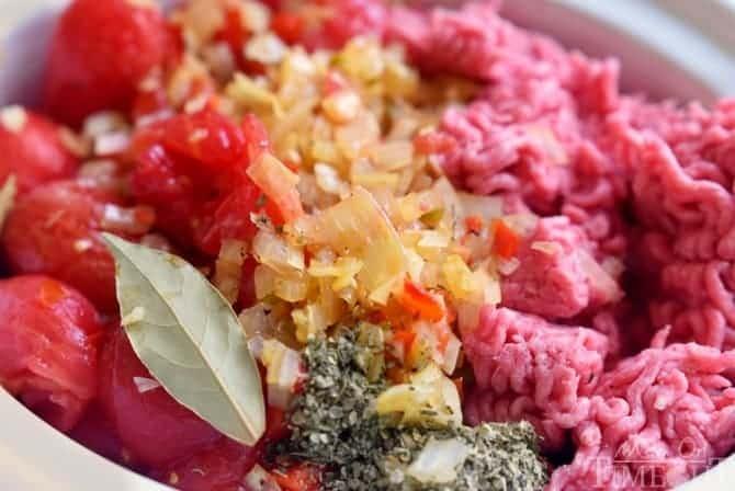 """receta de salsa de espagueti con olla de cocción lenta """"width ="""" 670 """"height ="""" 415 """"data-pin-description ="""" ¡Esta receta fácil de salsa de espagueti casera es perfecta para las noches ocupadas! Hecho en la olla de cocción lenta, esta deliciosa salsa de espagueti está llena de sabor y es un lote grande que es ideal para congelar. ¡Disfruta con tu familia esta noche! Hazlo con o sin carne, ¡tú eliges! // Mom On Timeout #spaghetti #sauce #recipe #dinner #easy #recipes #slowcooker #crockpot """"src ="""" https://www.momontimeout.com/wp-content/uploads/2015/07/slow-cooker-spaghetti -sauce-receta.jpg """"></p> <h2>Tomates frescos de jardín o tomates enlatados</h2> <p>Esta salsa de carne de espagueti es una de mis recetas favoritas porque consume muchos de mis productos de la huerta y es un gran lote que es ideal para congelar.</p> <p>He recogido cientos de tomates este verano y felizmente he suministrado a mis amigos y familiares productos frescos de mi jardín durante todo el verano. Mis plantas de tomate son un regalo que siguen dando. Por lo general, en este momento cada verano, mis plantas se han extinguido y también mi interés por la jardinería.</p> <p>La buena noticia es que tengo más que suficientes productos de mi jardín lateral … ¡más de lo que sé qué hacer con la mayoría de los días! Estamos disfrutando lote por lote de mi Easy Garden Blender Salsa y mi familia amante de los espaguetis se ha vuelto loca por esta receta de salsa de espagueti.</p> <p>Utilicé 5 libras de tomates frescos para el jardín en esta receta, pero podría reducir a la mitad la receta para su familia.</p> <p>Si desea usar tomates enlatados, use tres latas de 28 onzas de tomates triturados o cortados en cubitos, o una combinación de ambos en lugar de los tomates frescos en la receta a continuación.</p> <p><img class="""