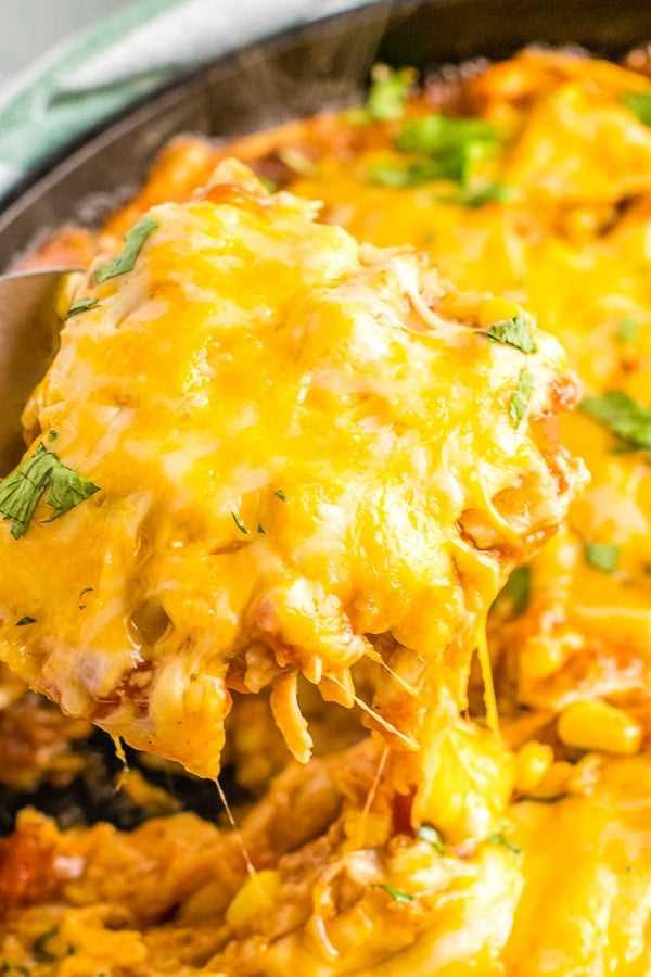 Porção de queijo de enchiladas de frango frigideira