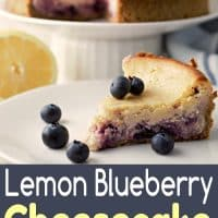 Lemon Blueberry Cheesecake Small Batch Recipe for Two