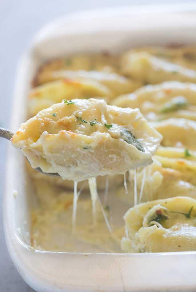 Una cucharada grande de pollo al horno y brócoli alfredo rellenos de conchas de pasta gigante.