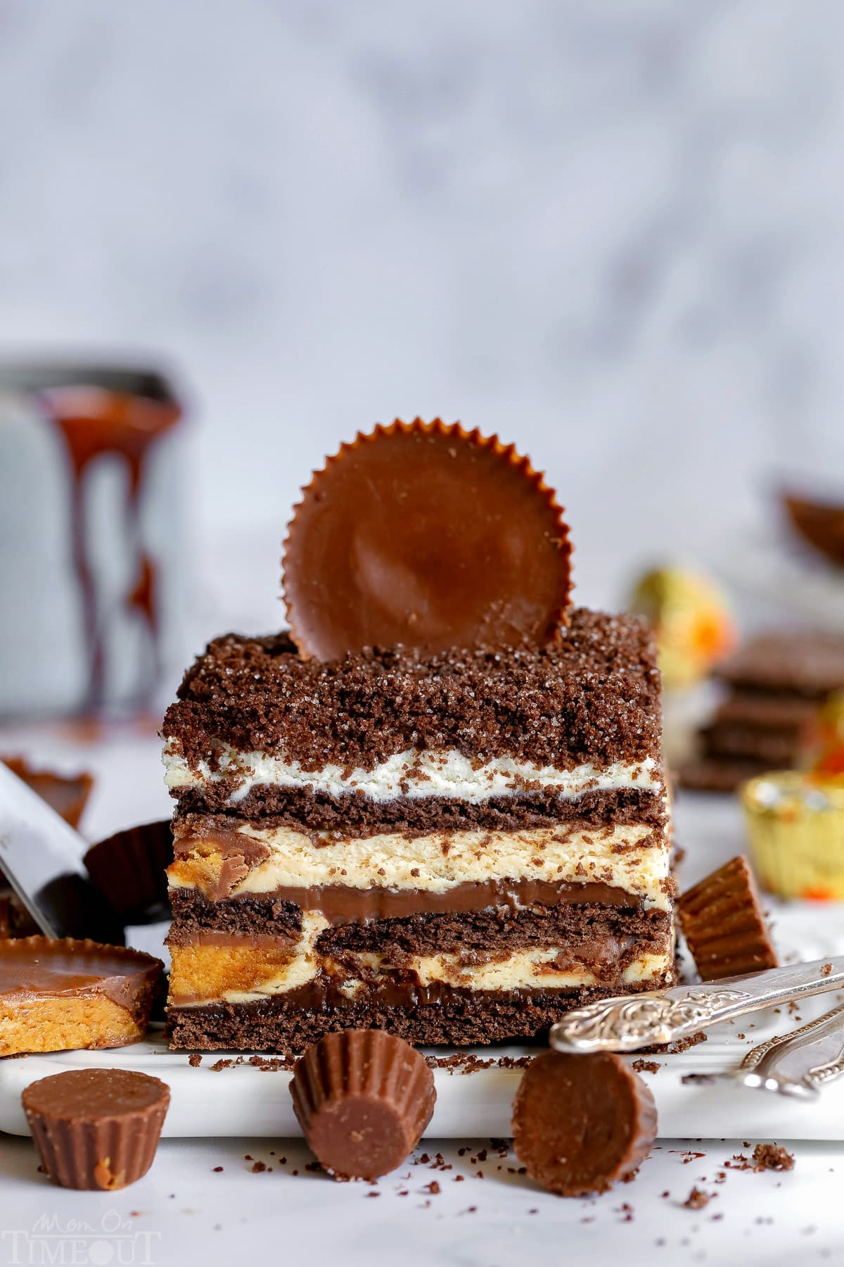 """icebox-cake-peanut-butter-reeses-chocolate-graham-crackers-no-text """"ancho ="""" 738 """"altura ="""" 1108"""