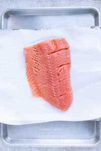 Cinco filetes de salmón en una bandeja para hornear.