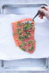 Salsa de limón y albahaca se vierte sobre filetes de salmón en una bandeja para hornear forrada con papel de aluminio y papel pergamino.