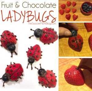 ¡Estas fáciles mariquitas de frutas hacen que comer fruta sea divertido! ¡Una merienda o postre saludable para los niños que les encantará comer!