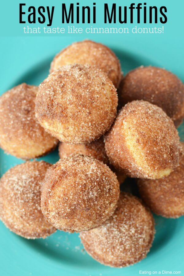 If you love old-fashioned sugary donuts but hate all the work, you'll love the Mini Donut Cinnamon Sugar Muffins. Learn how to make Mini Donut muffins.