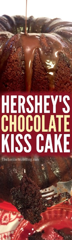 This double Hershey's Kiss chocolate cake is so rich, so sweet and so decadent - even one bite is pure dessert treat!
