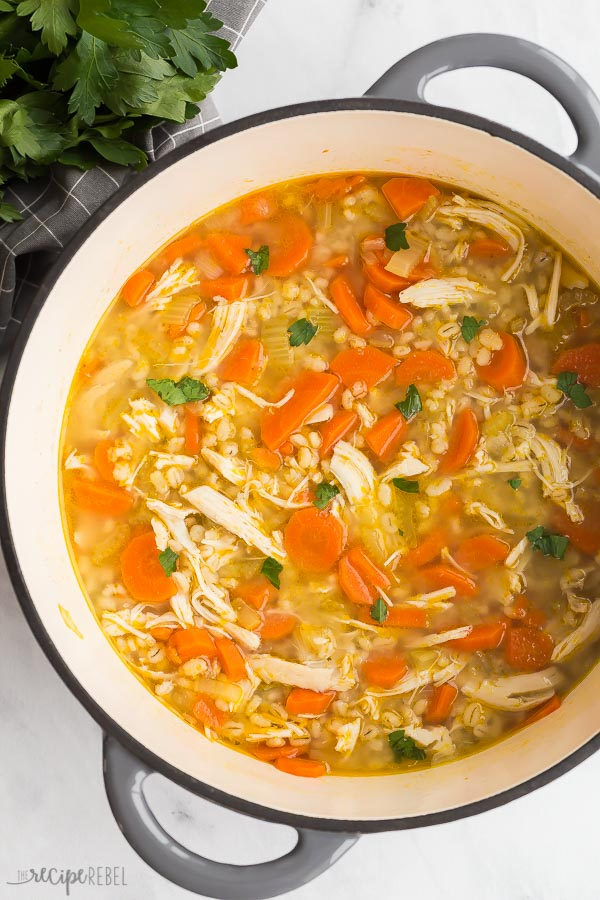 chicken and barley soup in a pot