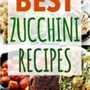 15 mejores recetas de calabacín