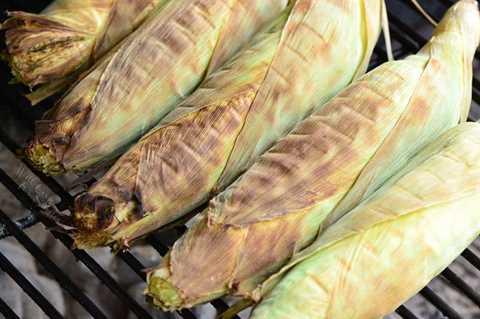 parrilla de maíz en la mazorca en las hojas