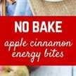Estas picaduras de energía de manzana y canela sin hornear son divertidas, llenas y no podrían ser más fáciles de hacer. ¡También son excelentes para las loncheras escolares! ¡Obtén la receta fácil y divertida en RachelCooks.com!