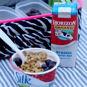yogur granola parfait cuadrado