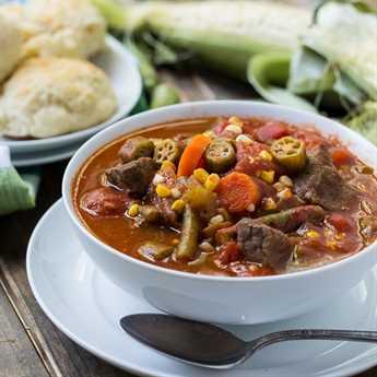 Sopa de carne vegetal